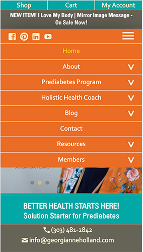 Holland Health Coaching Website Mobile Menu