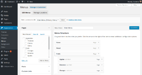 WordPress: Content Management Class Project Menu Admin Page