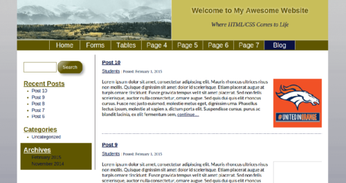 WordPress for Developers: Custom Themes Class Project Screenshot